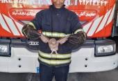 نجات جغد گرفتار شده در لو له دودکش منزل مسکونی