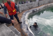 سقوط در استخر آب مرگ پیرمرد 75 ساله  را رقم زد
