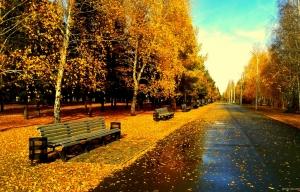 زیبایی های پاییز / گزارش تصویری